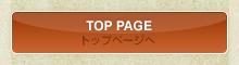 TOP PAGE/おつまみ 通販 直販
